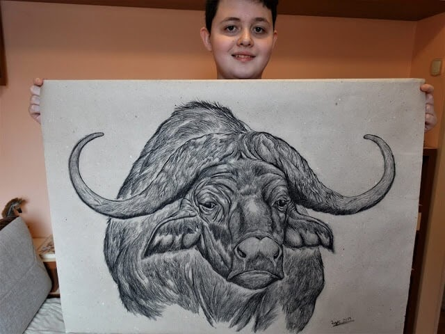 09-Water-Buffalo-Dušan-Krtolica-No-Reference-Drawings-come-from-Memory-www-designstack-co