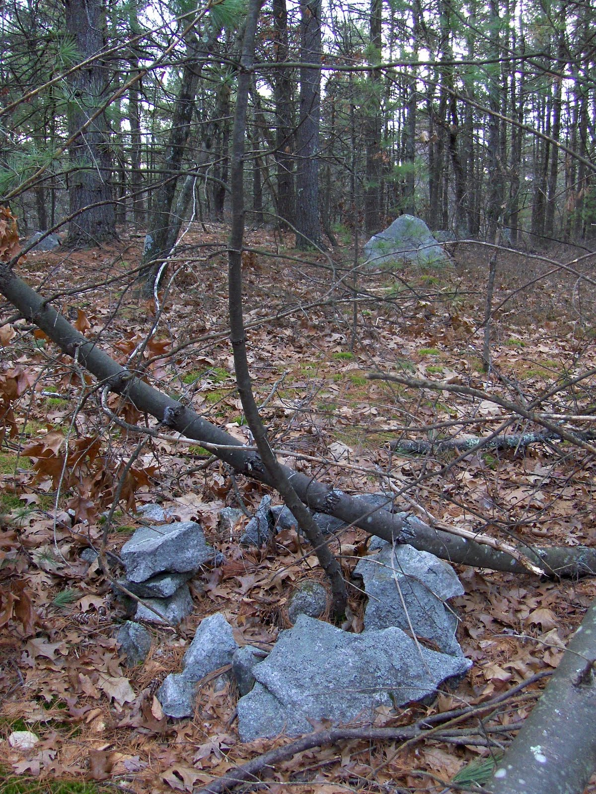 Rock Piles Another Small Site Off Tenney Rd Westford Ma