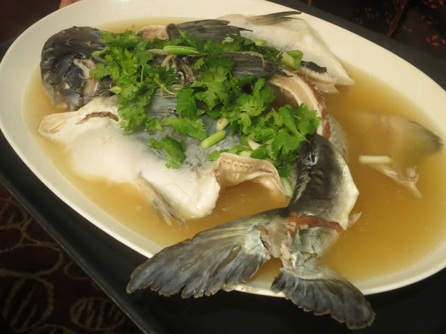 Steamed live wild giant catfish in Japanese sake