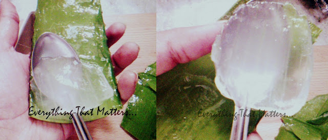 How+to+make+Aloe+vera+gel+at+home+DIY+natural+hair+masks