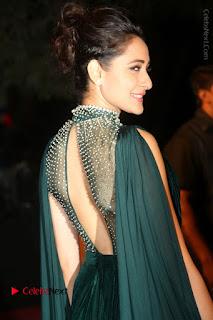 Actress Pragya Jaiswal Stills in Green Long Dress at Gemini TV Puraskaralu 2016 Event  0058.JPG