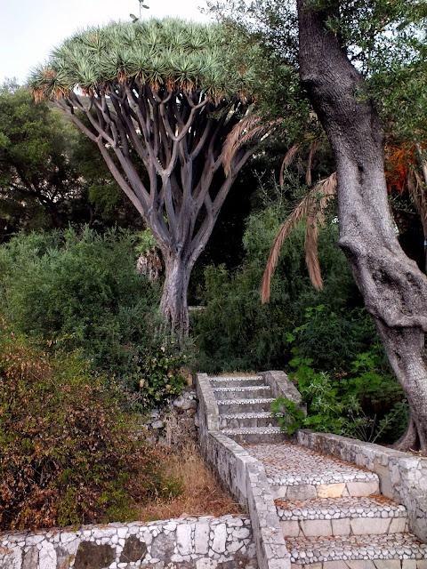lugares que ver en el Peñón de Gibraltar