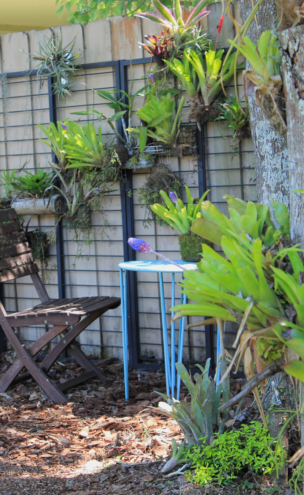 CREATE A VERTICAL GARDEN FROM CHEAP BIRDFEEDER BASKETS