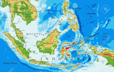 Sulawesi Civet map