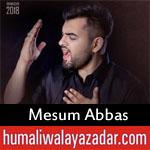 https://www.humaliwalayazadar.com/2018/05/mesum-abbas-ramzan-noha-2018.html