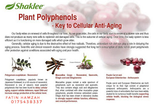 Polifenols-anti-penuaan