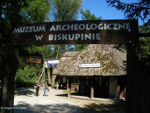 La Pompeia de Polònia, arqueologia, Lusacià