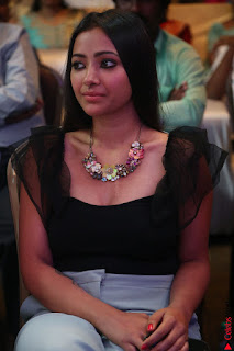 Swetha Basu in a Black Sleeveless Top Long Skirt at Mixture Potlam Movie Audio Launch 046.JPG
