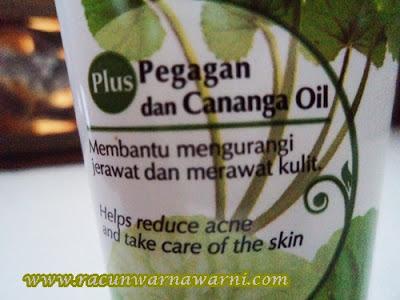 Pegagan dan Cananga Oil