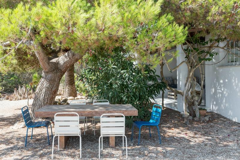 Comedor al fresco, bajo un pino