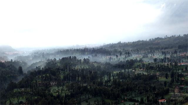 Kabut pagi di Bromo