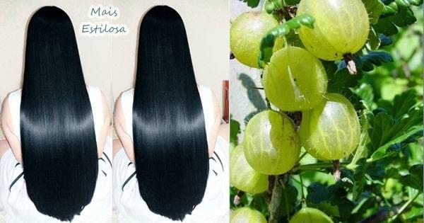 groselha indiana cabelo crescer