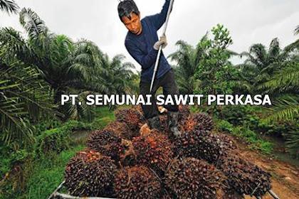 Lowongan PT. Semunai Sawit Perkasa Pekanbaru Februari 2019