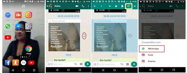 Tutorial sobre Whatsapp
