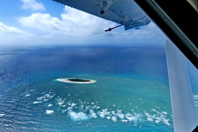 Wasserflugzeug Sicht Aussicht Heron Island Atoll Flugangst Meer Korallen Great Barrier Riff