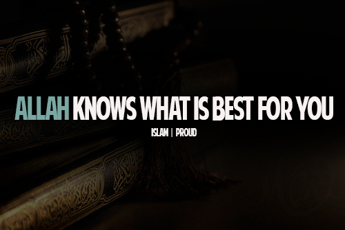 Allah Quotes: Allah knows what is best for you