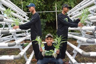 Agen Sarana Hidroponik Berkualitas di Cibubur, Agen Sarana Hidroponik Berkualitas di Jakarta, Agen Sarana Hidroponik Berkualitas di Malang