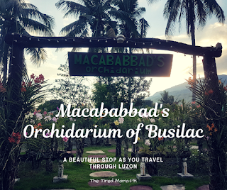 https://www.thetiredmamaph.site/2018/11/the-macababbad-orchidarium-busilac-bayombong-nueva-vizcaya.html
