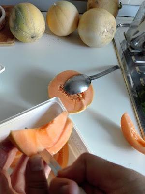 Coltivare meloni nell'orto biologico: conservare i semi