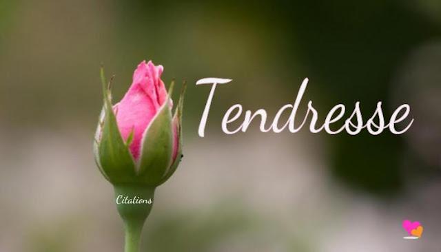 Fleurs de la tendresse.