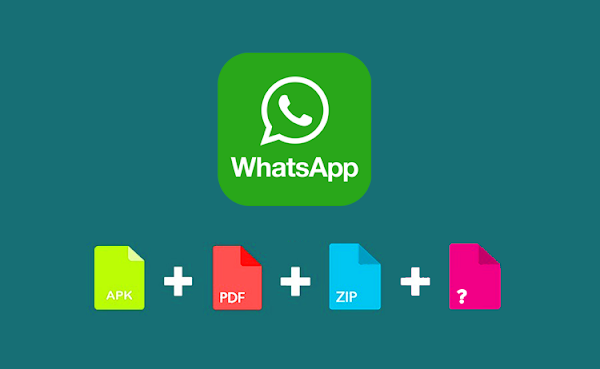 Download Unknown Format File from WhatsApp