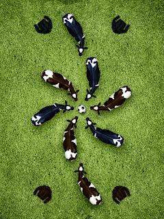 Vaca sy juego de fútbol
