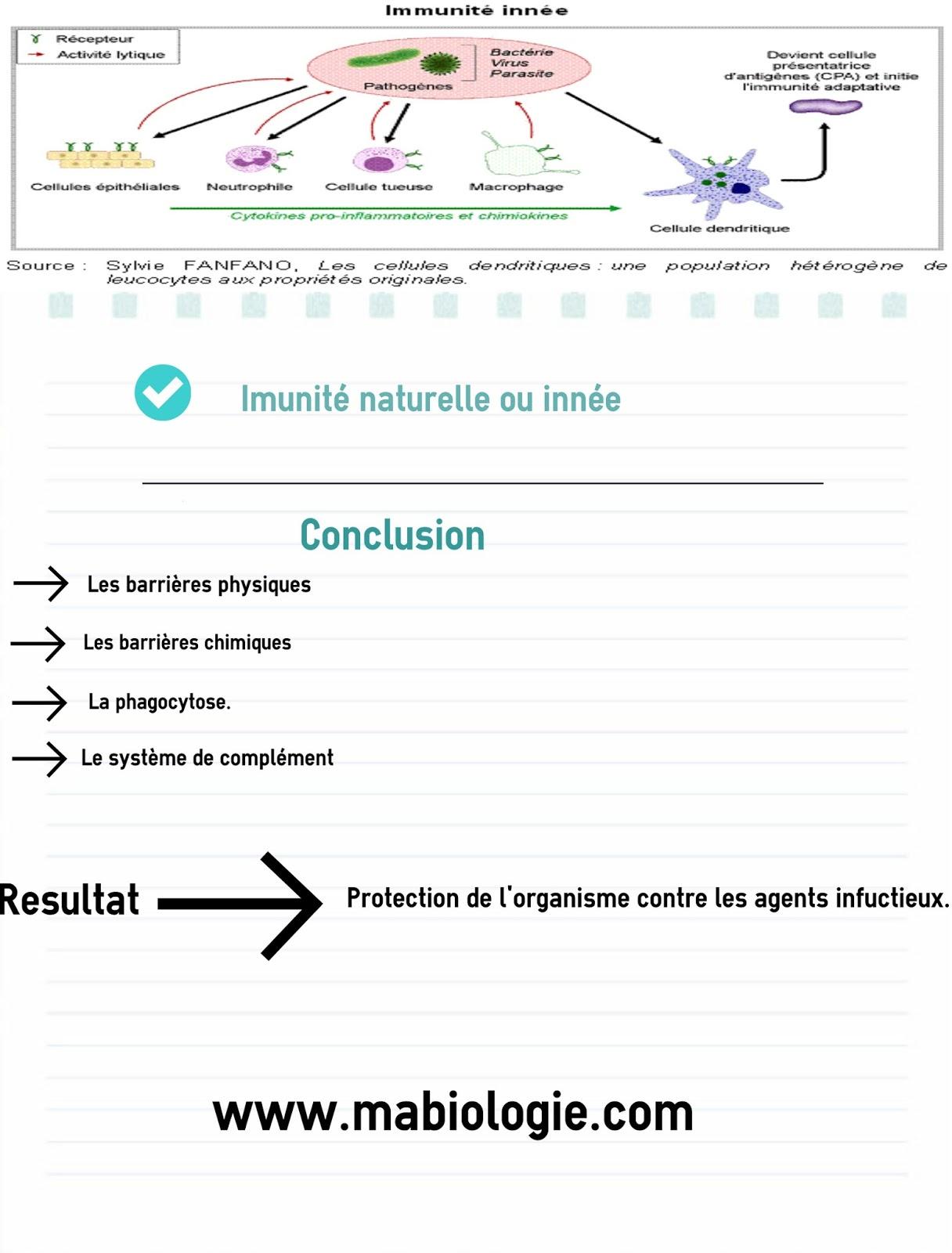 La réponse immunitaire naturelle ou innée
