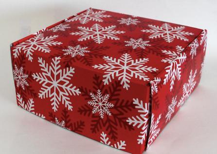 CrtWorld Christmas Cards Bulk Merry Christmas Greeting Cards for Christmas, Envelopes Included (9 Pack)