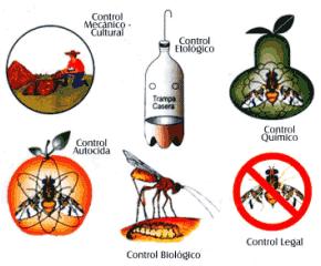 Resultado de imagen para CONTROL ETOLOGICO