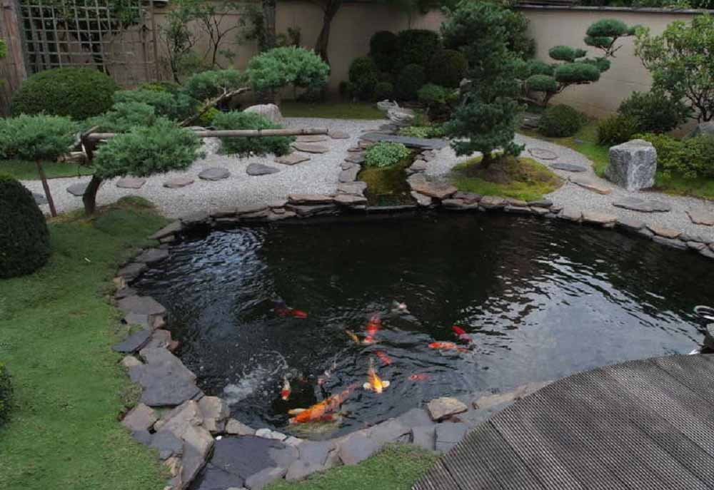 40 gambar kolam ikan minimalis kolam ikan koi kolam ikan for Koi pond kiddie pool