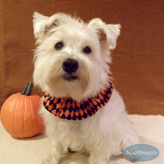 Halloween Argyle Orange and Black Dog Scrunchie Ruffle