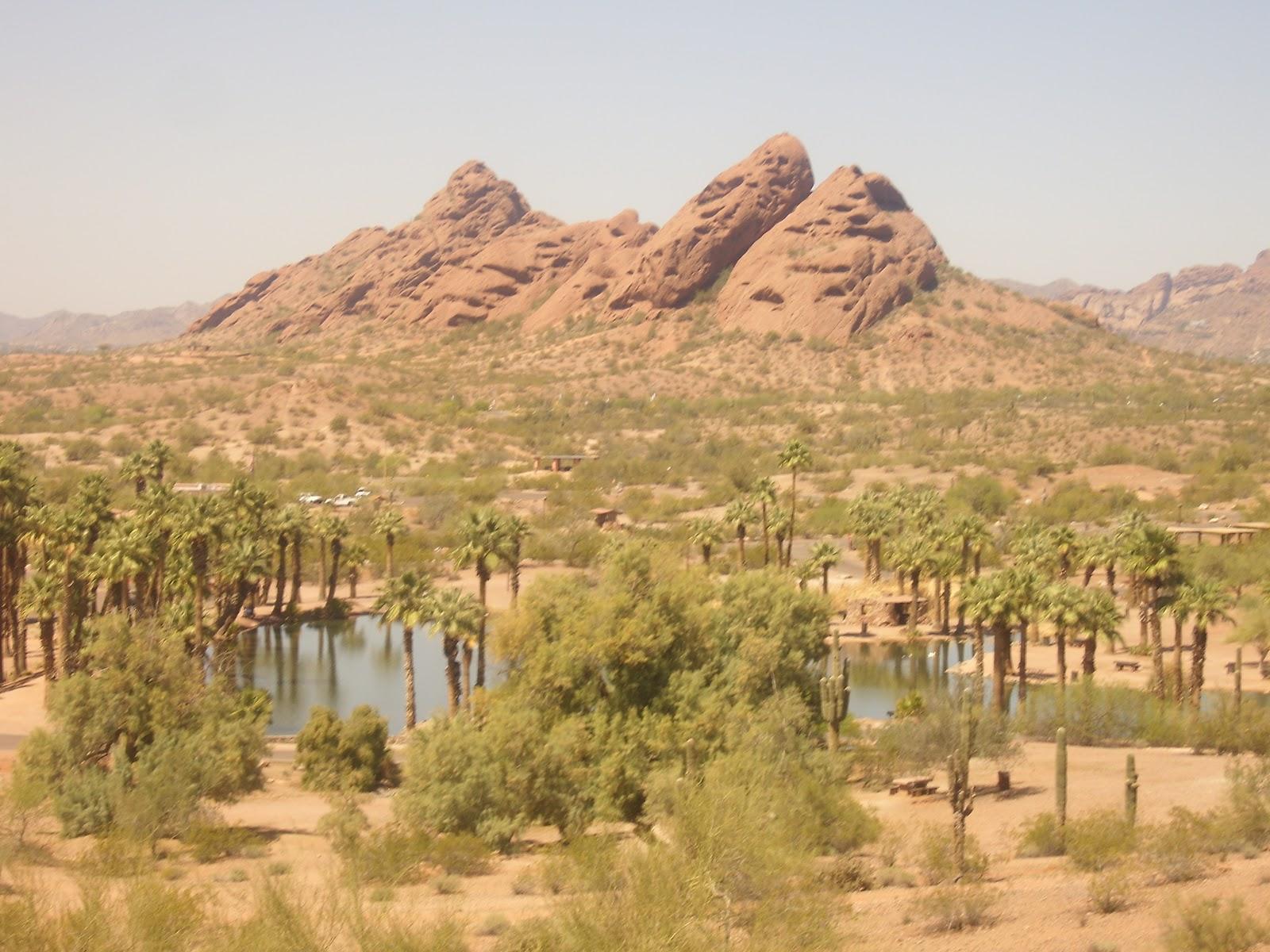 Arizona Backyard Travel