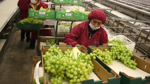 Cerca de 4,000 millones de consumidores en el mundo disfrutan de productos peruanos