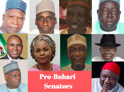 Order of elections: Pro-Buhari Senators face one year suspension