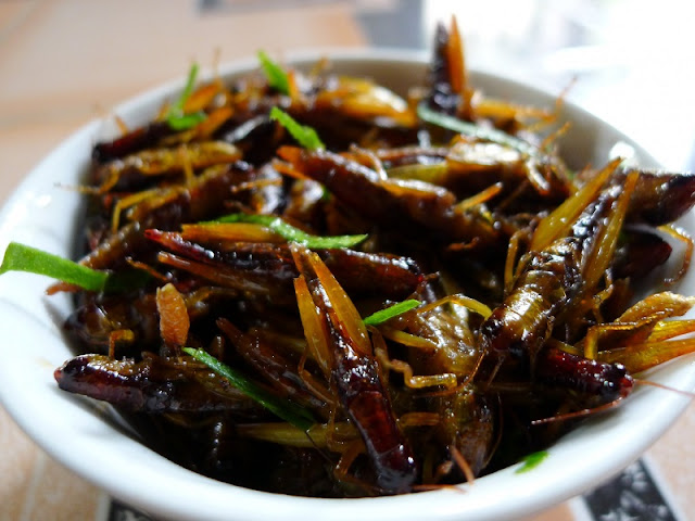 The Food from Insects Makes Many People Fascinated 1