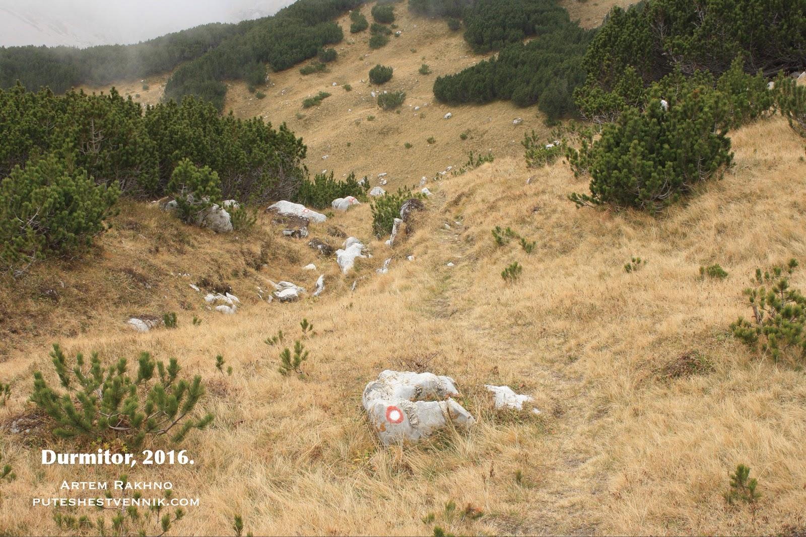 Метки на тропе в Дурмиторе