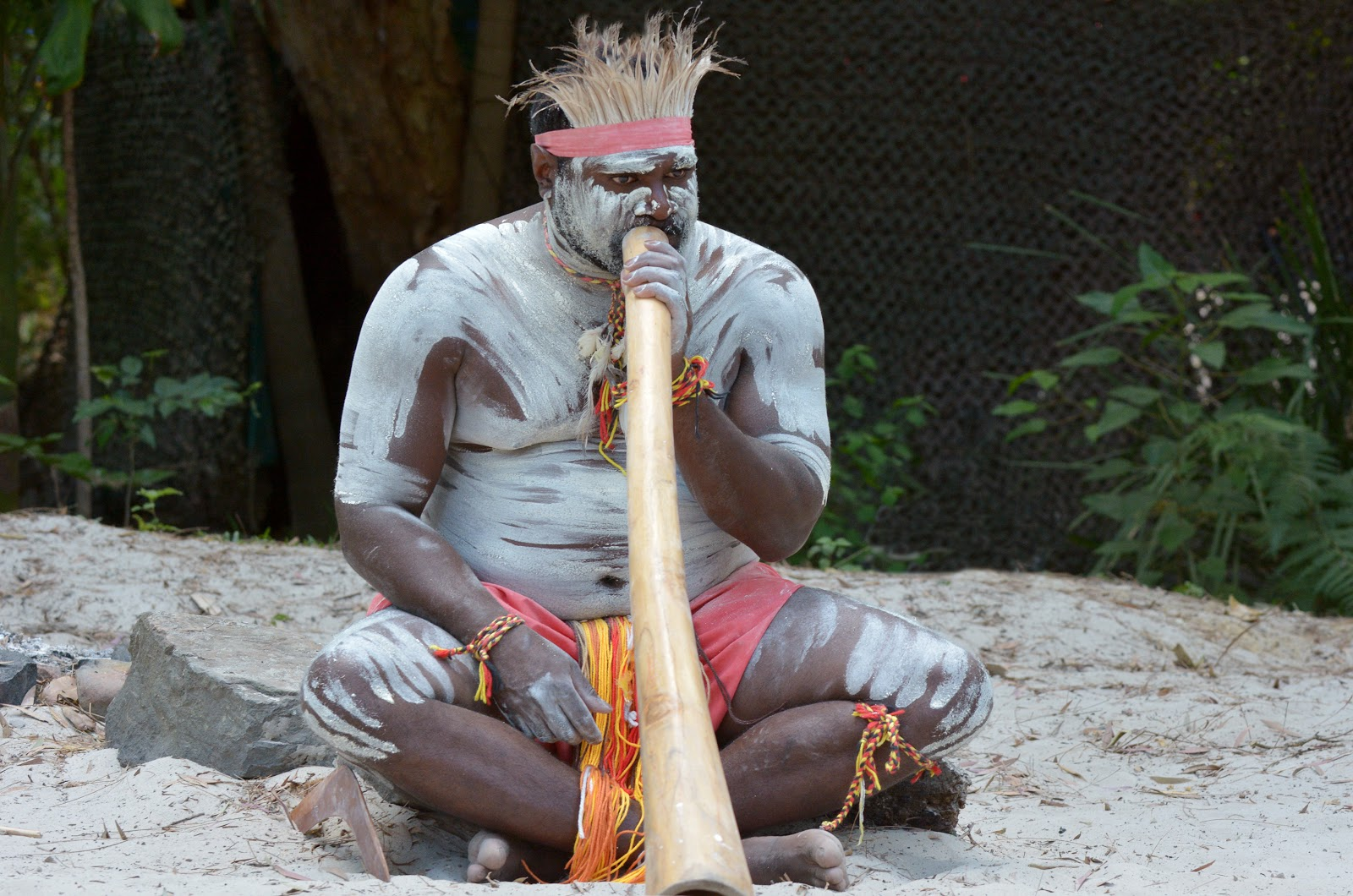 The australian didgeridoo brings high low fun to the for Australian traditions