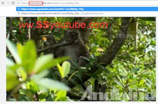 Cara download video di youtube dengan cepat tanpa aplikasi