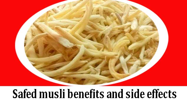 safed musli benefits