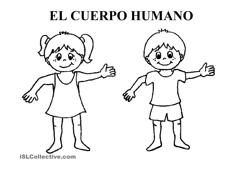 Lujo Cuerpo Humano Para Colorear Páginas Para Jardín De Infantes ...