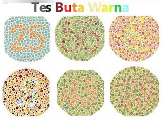 Cara Agar Lolos Tes Buta Warna (Contoh tes buta warna dan jawabannya)