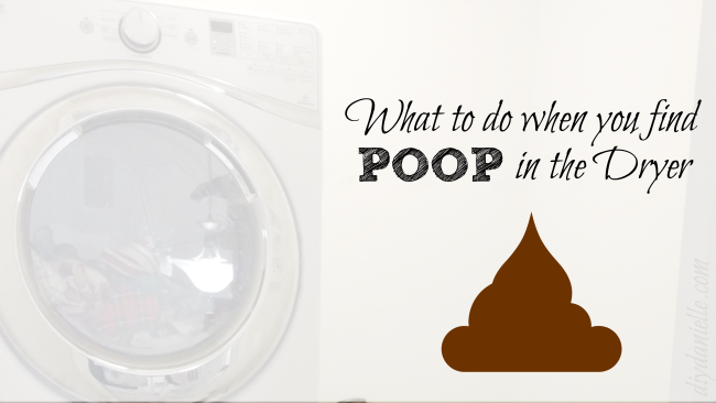 How to clean poop out of the washing machine and dryer.