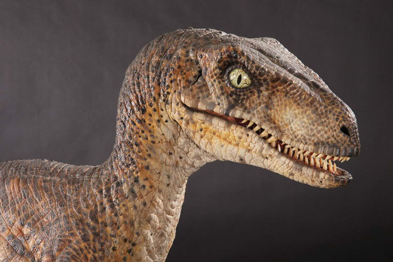 Jurassic Park Velociraptor Come With Me, I...
