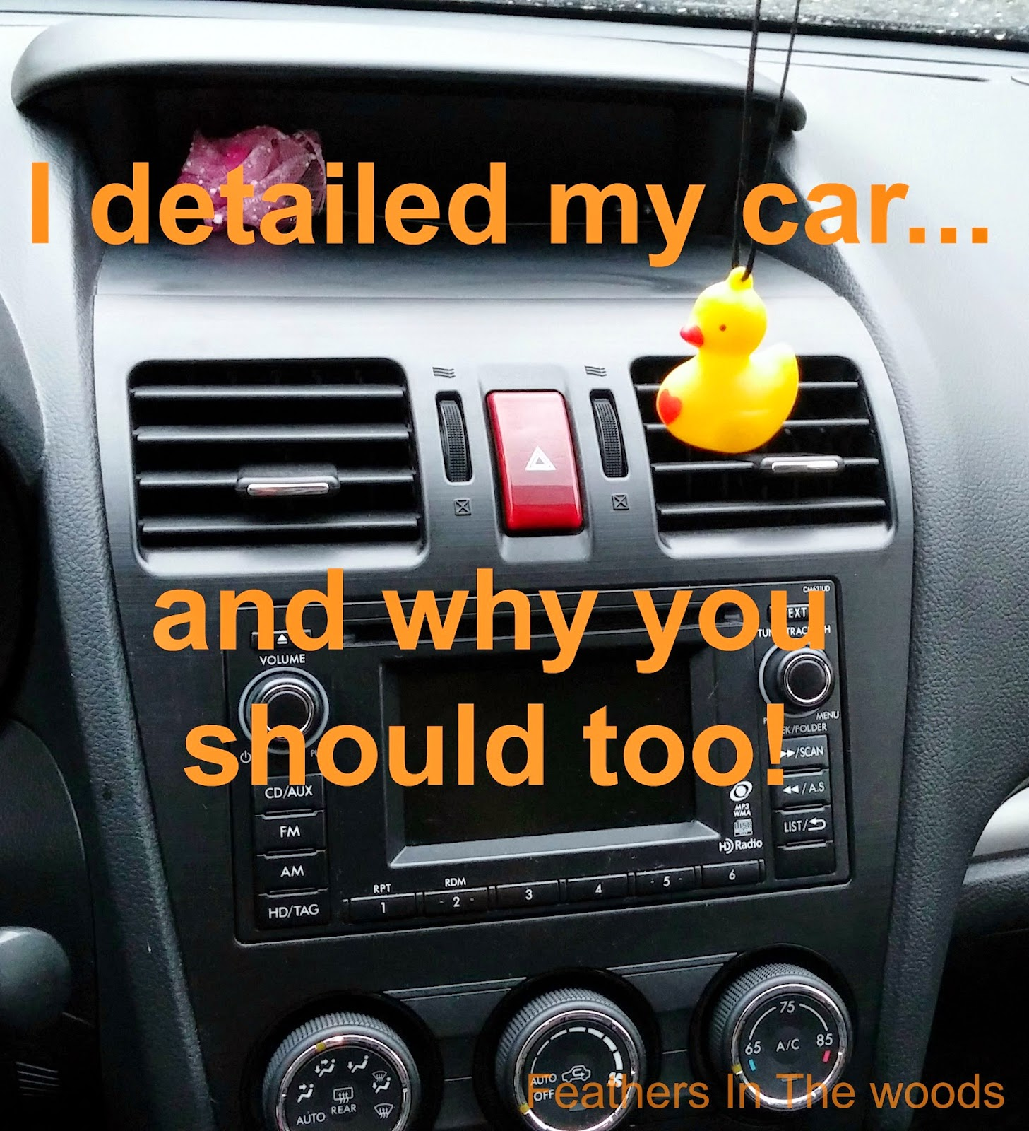 why you should detail your car