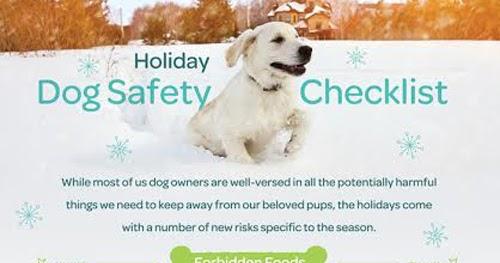 Holiday Homes Dog Friendly Salcombe