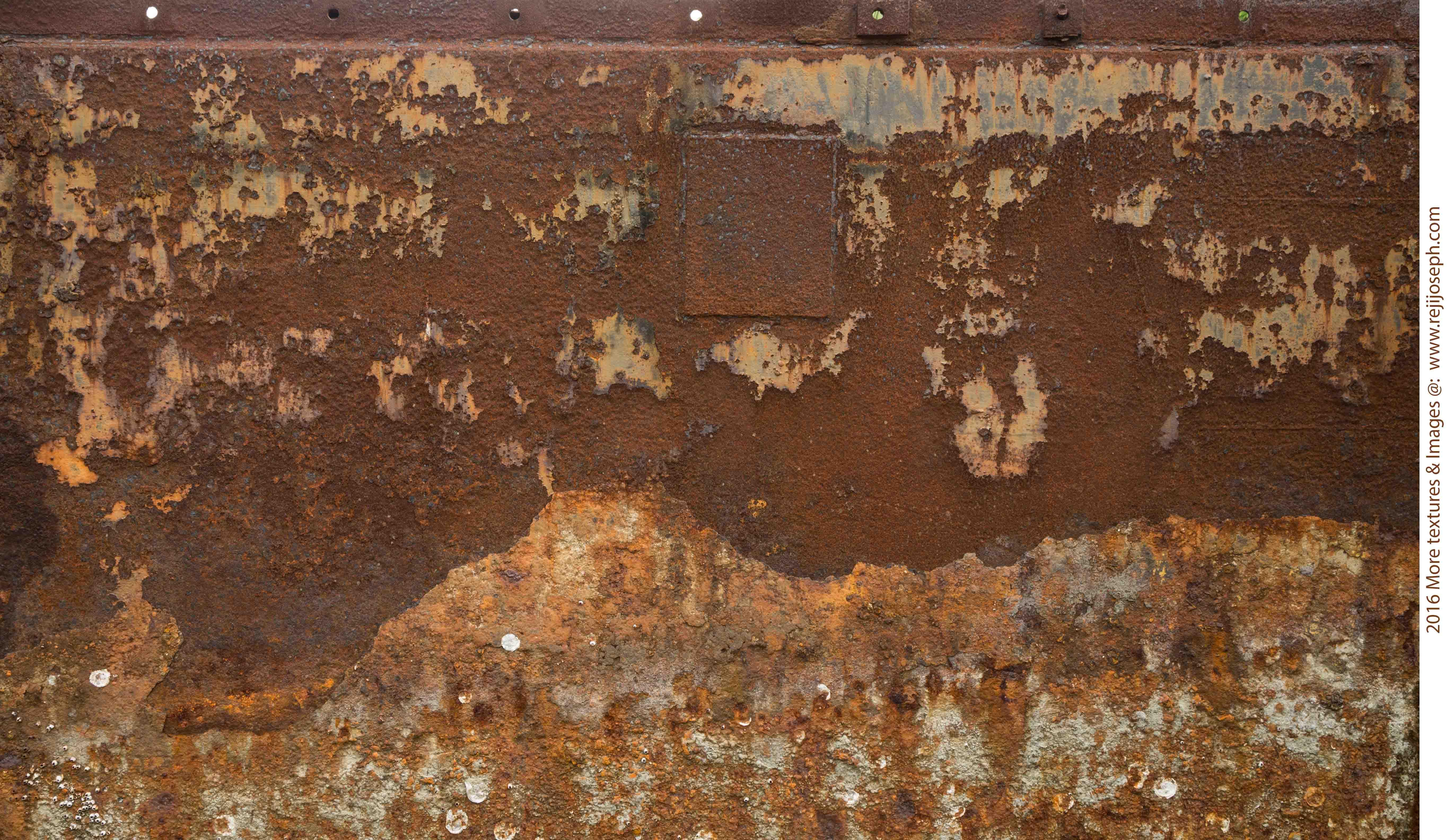 Rusty metal texture 00018