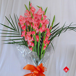 le gla eul fleur du mois d 39 ao t le monde des fleurs blogue le pot de fleurs. Black Bedroom Furniture Sets. Home Design Ideas