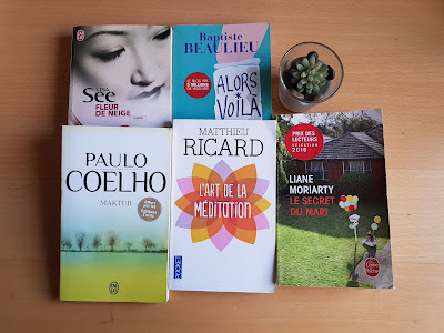 plusieurs-romans-achetes-a-la-foire-de-livres
