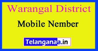 Hanamkonda Mandal Sarpanch Upa-Sarpanch Mobile Nembers List Warangal District in Telangana