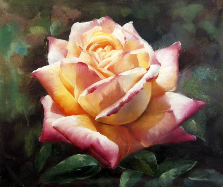 Pinturas de Rosas